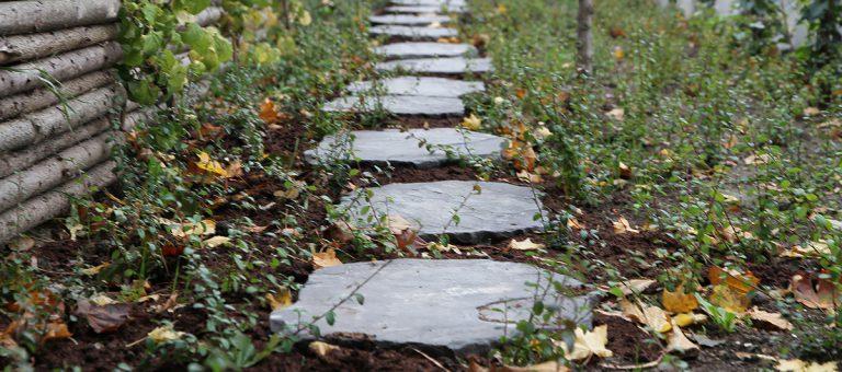 Steppingstone stor